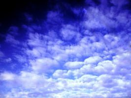 SKY SCAPE by sharkbaits
