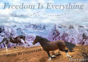 Manip, freedom by puppy1128