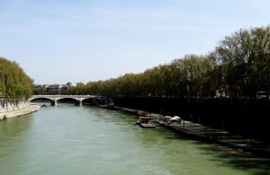 Tiber by Roux-m