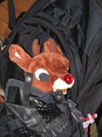 Build-a-Bear Rudolph 5 by TaionaFan369