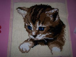 Embroidery - Kitten by 9-AmBeR-6