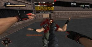 First Person Madness by Wesker500