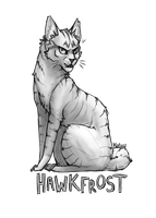 Hawkfrost says check out my tumblr by kuiwi