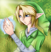 Link with Fairy by sassie-kay