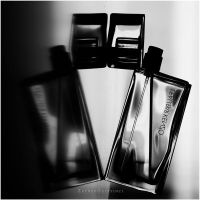 parfume :. by estellamestella