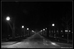 The road to sanitarium by ZSudeta