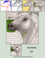 Incitatus Non-Remap Commission by damustang