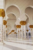 ...Sheikh Zayed Mosque III... by Elegance85