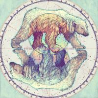 Polar circles by Yaphleen