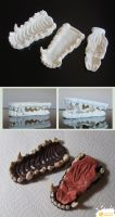 Resin Canine Jaw Set by LimitlessEndeavours