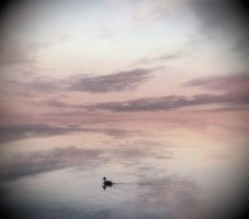 Dreaming Oblivion by intao