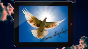 1080p Dove Wallpaper iPad 3 (Black edition) by wahashmi