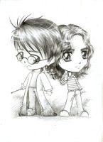 Harry and Hermione_SD by kamawanai