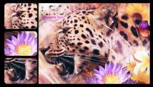 The leopard by chouk57