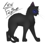 Crowfeather by Starburst565