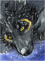 ACEO .: Moonlight::. by WhiteSpiritWolf