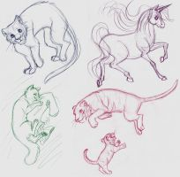 Animal sketches by insectikette