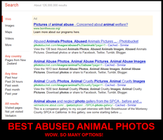 Best Animal Abuse Photos by Ziblink