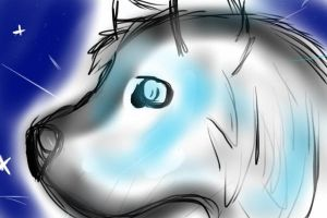 Testing if I can Draw on my iPhone by BabyKichy