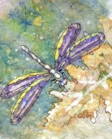 Dragonfly Batik by drspoon