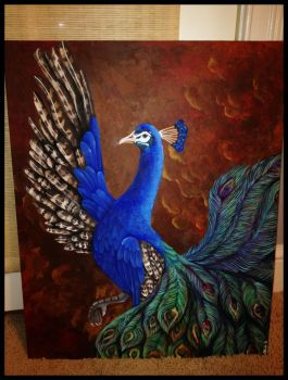 A Peacock by OliviaNub