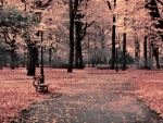 fall by anemi