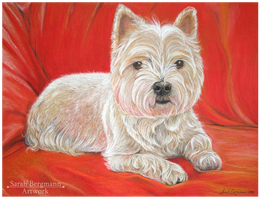 West Highland Terrier - Commission by BLACKNIGHTINGALE81
