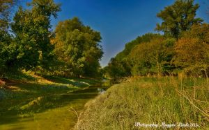 Hungarian landscapes. Gemenc. HDR-picture by magyarilaszlo