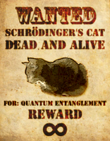 Schrodingers Cat by TheDragoon86