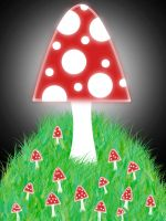 Mushroom Family by Tommymommy