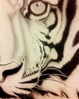 Eye of the Tiger by abstractxpressions
