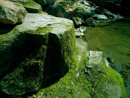 Rocky Outcrop by Riverly