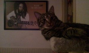 Seb chillin' with Bob Marley by devinemrs