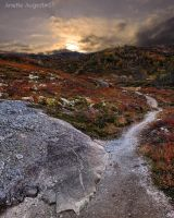 Rocky Road by Hestefotograf