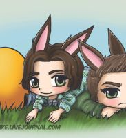 Sam and Dean, Easter bunnies - gif by AngelicFoodCake