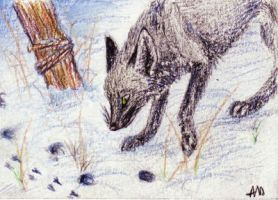 ACEO Follow your trail by Nanook94