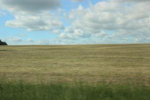 Field/cloud/background stock 2 by BeccaB323