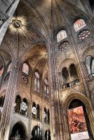 Notre Dame 2 by Lady-Vetinari