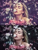 50 Premium Lightroom Presets - Fashion Noise by mudgalbharat