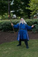 2014-08-31 Wizard in Park 03 by skydancer-stock