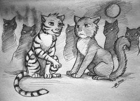 Warriors: Crookedpaw and Bluepaw by Marshcold