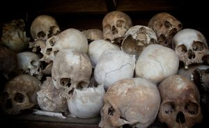 The Killing Fields by saxondale
