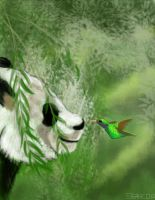 Day 16:Panda and HummingBird by HowlSeage