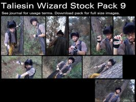 Taliesin Wizard Stock Pack 9 by Durkee341