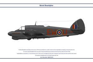 Beaufighter GB 307 Sqn 1 by WS-Clave