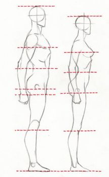 PROPORTIONS by AbdonJRomero