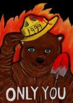1999 : Only You Can Start Wildfires by charcoalman