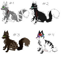 .: Cat adoptables OPEN 1 LEFT  LOWERED PRICE !!!:. by SaachiPrime