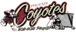 Coyotes Playoff shirt by rjonesdesign