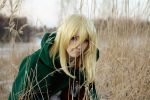 Attack on titan - Christa by naoch